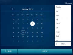 Calendar with Interpret - iPad