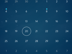 Calendar iPhone view