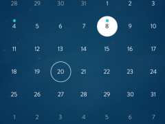 Calendar Interpret iPhone view